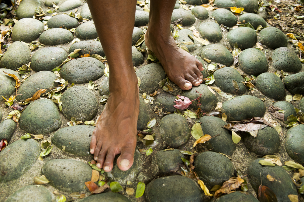 IMG-405.Vanuatu.Efate.The Summit.the gardens